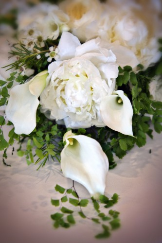 White Bridal Bouquet - BrideStLouis.com